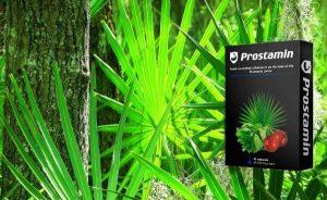 палма и Простамин кутия