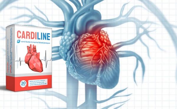 cardiline, сърце