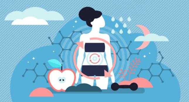 метаболизъм, бърз, бавен, обмяна, здраве
