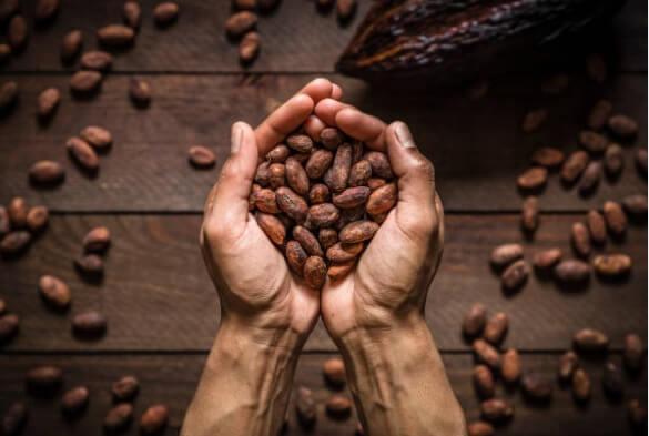 Какаови Зърна за Високо Кръвно